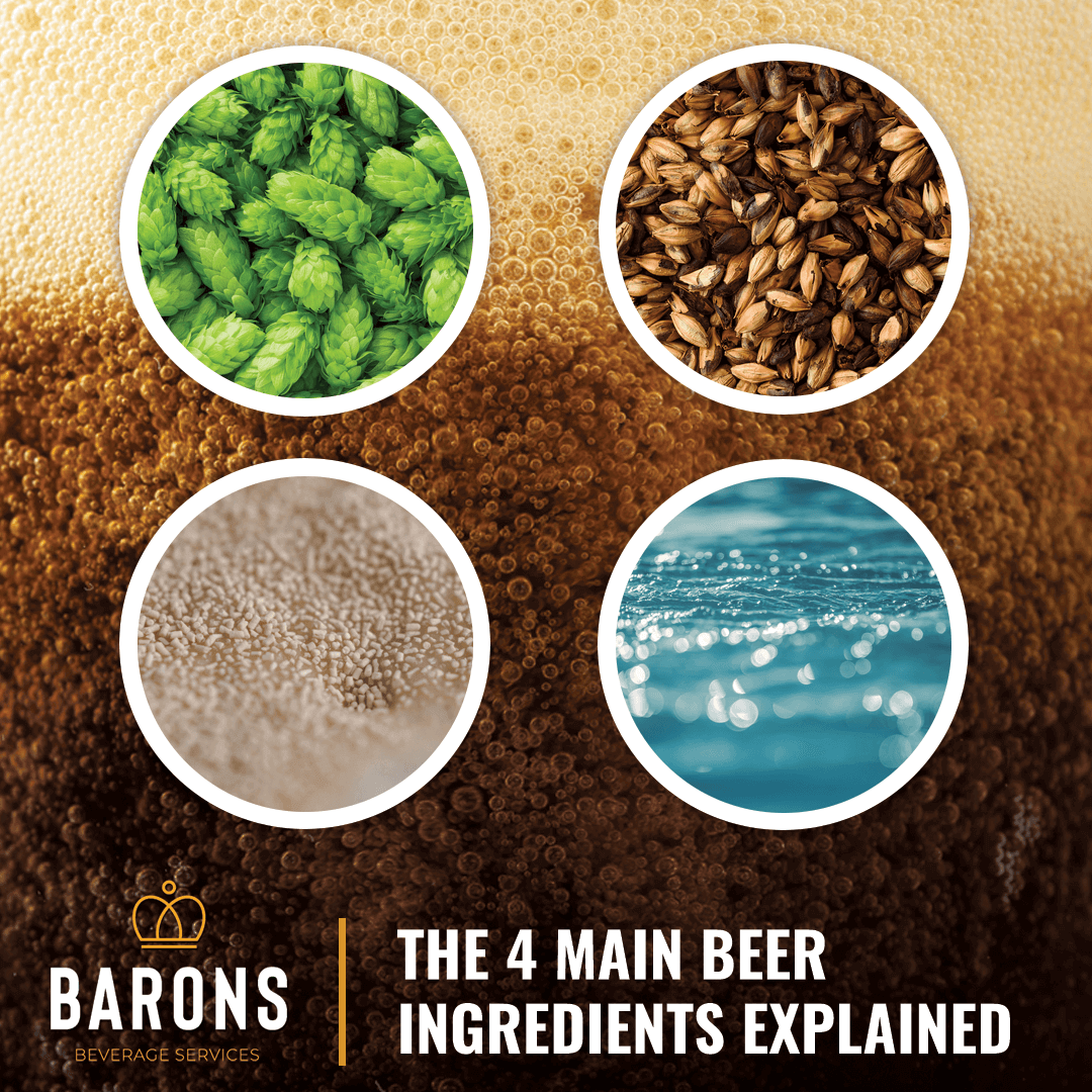 The 4 main beer ingredients explained